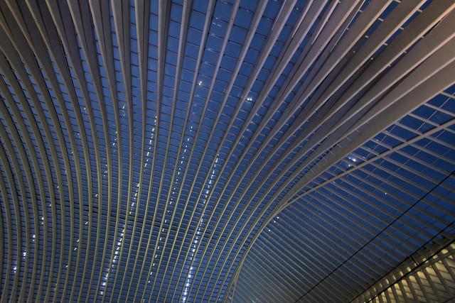 Fabulous roof of Liège-Guillemins