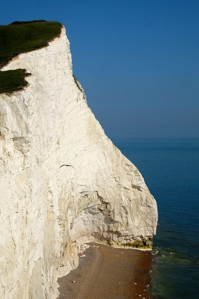 BTS 194 Cliffs near Seaford