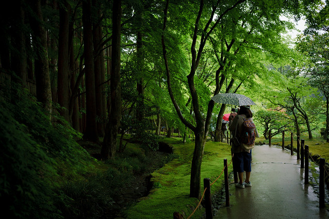Walk through the Garden of Ginkakuji