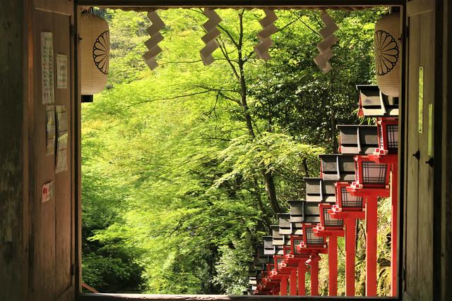 kifune-toro014