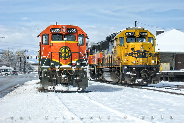 Geeps in the Snow, Canon POWERSHOT A560