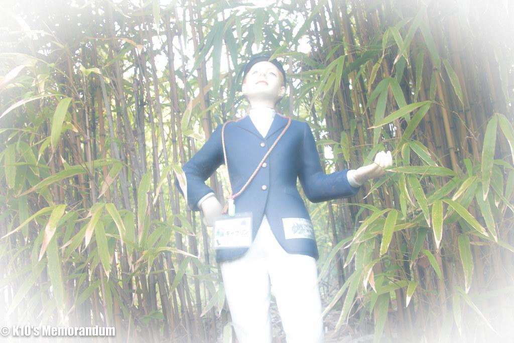 IMG_6292丹沢山