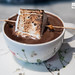 Hot chocolate with torched housemade marshmallow