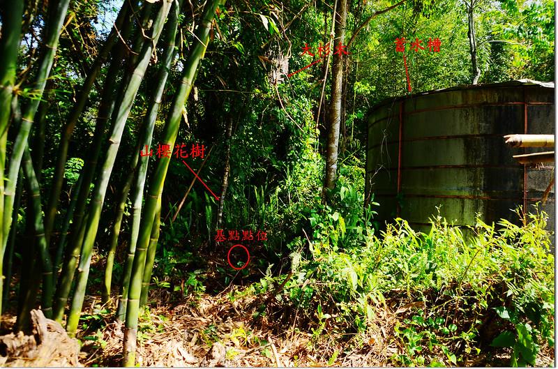 十字路護管所山字森林三角點點位
