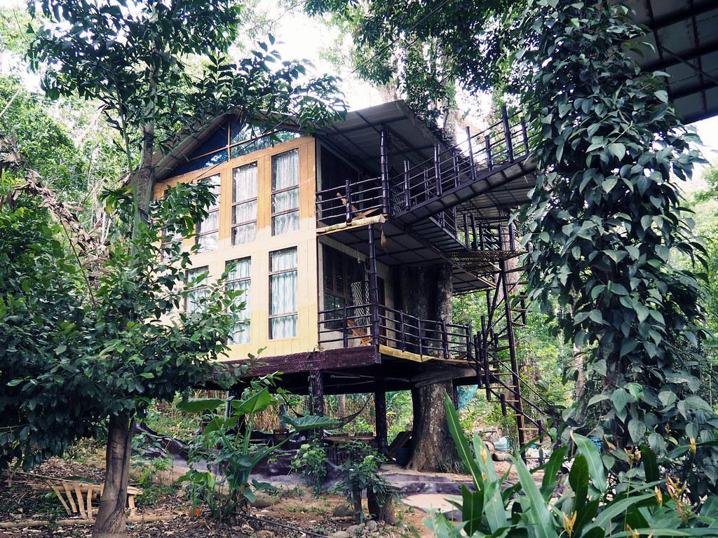Treehouse Munnar Kerela India Travel Guide Reviews_effected
