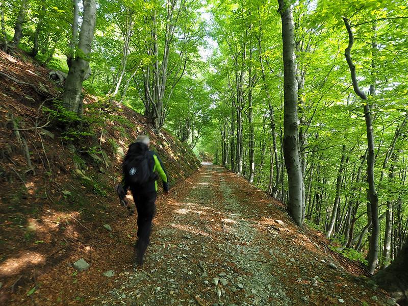 Monte Zeda, partenza dal Passo Folungo