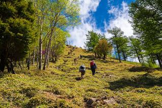 笠取山の西側の肩へ登る登る