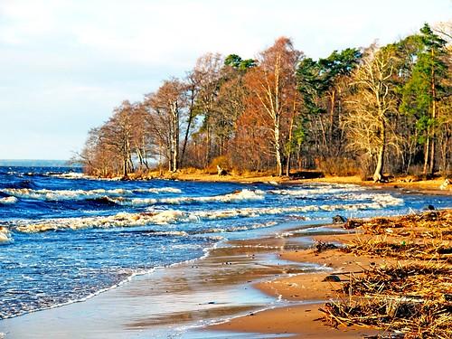 Волна и берег