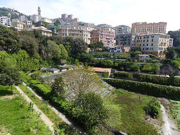 verdure à Gênes