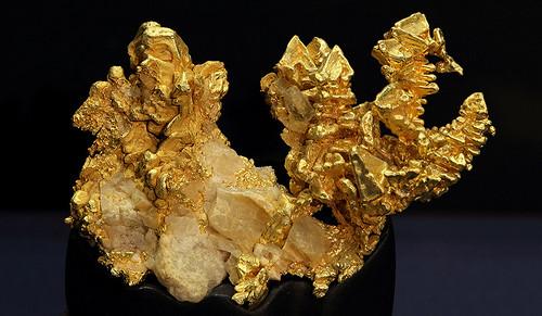 California gold speciman Peabody Museum