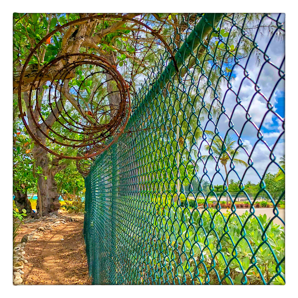 A Serious Fence