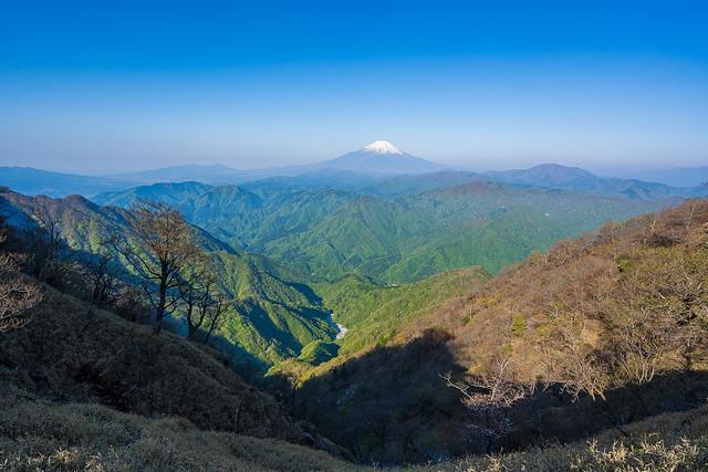 富士山と新緑の山々