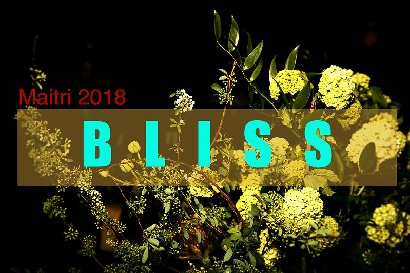 Maitri Compassionate Care: Bliss Gala 2018
