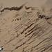 Dunes du Pilat 02 by DD 29