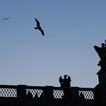 Roma: El Castillo del Angel