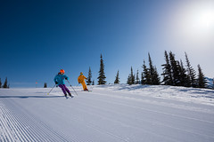 Skiing groomers on a sunny spring day