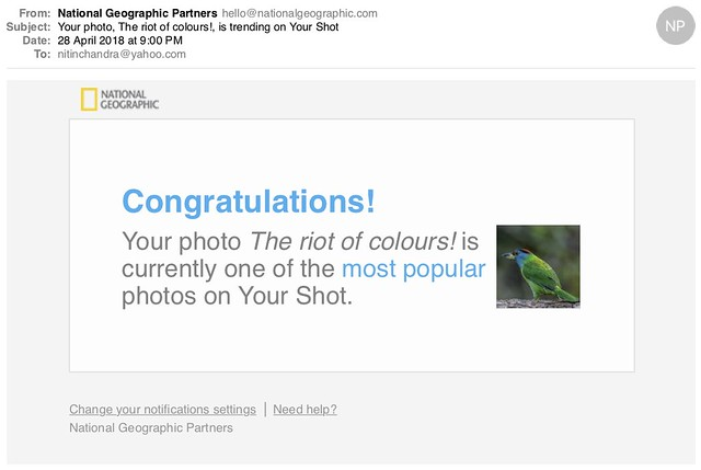 Your photo The riot of colours is trending on Your Shot