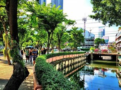 Skyscrapers and shady canals, I :green_heart: #bangkok #urbanhiking