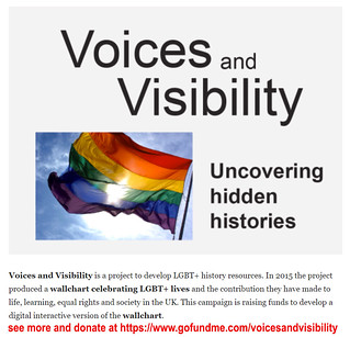 Voices and Visibility