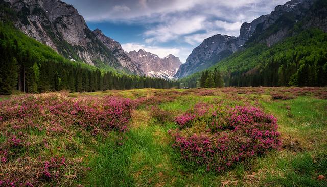 Krma valley in early, Nikon D810A, AF-S Nikkor 28-300mm f/3.5-5.6G ED VR