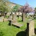 Irvine Old Parish Churchyard (234)