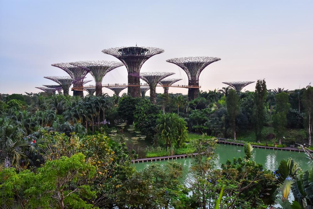 singapore-dubai-(25)
