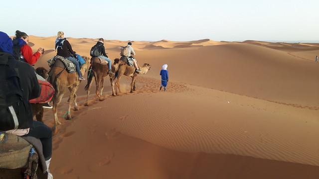 camel ride, Sahara Desert, Merzouga, Morocco