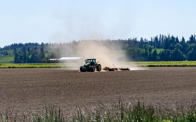 Dusty Skagit Farms