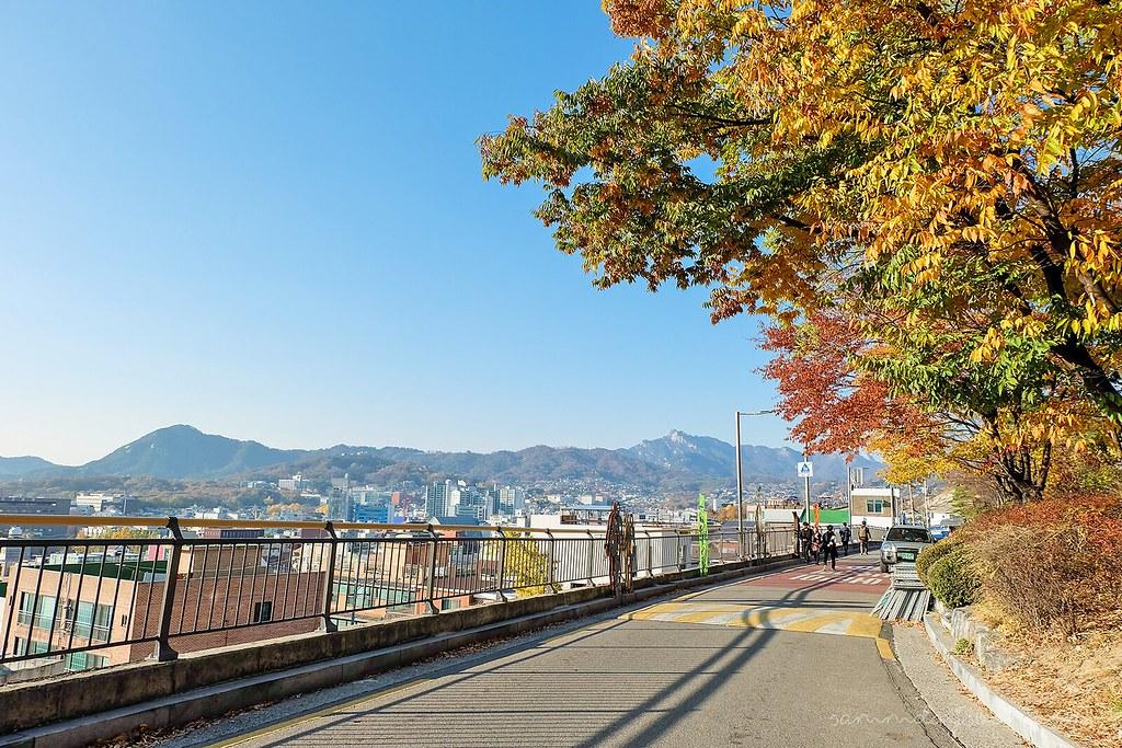 sunny_naksan_park_autumn