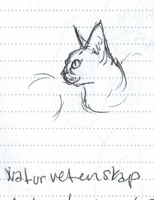 loganprofile-sketch
