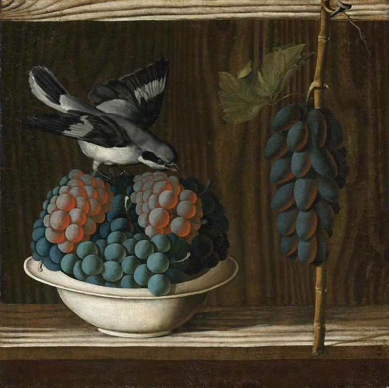Antonio Leonelli - Still Life with Grapes and a Bird (c.1505)