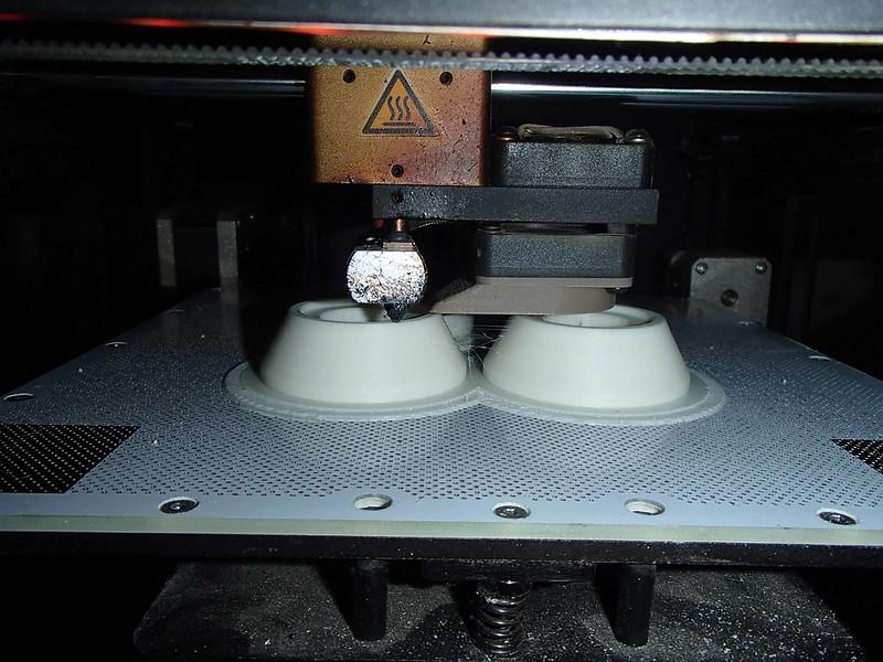 Ears Printing