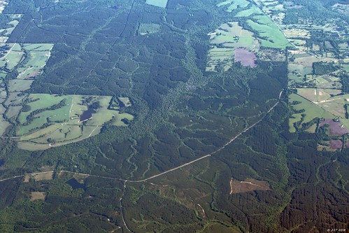 zeesstof aerial aerialview flight commercialflight viewfromwindow windowseat airline unitedairlines united mississippi trees forest landscape dendritic