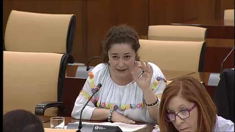 Inmaculada Nieto, hoy en la Comisión de Salud.4