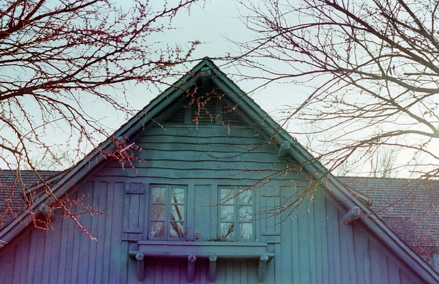 A Surreal Lodge