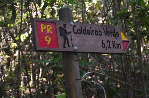 Im Wald ein Wegweiser zum grünen Kessel