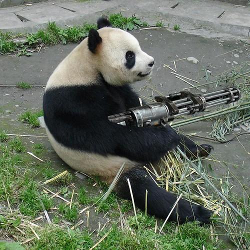 holycrap the pandas got a rail gun!