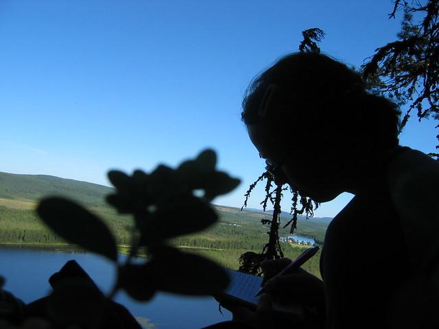 På en lingontuva 2006