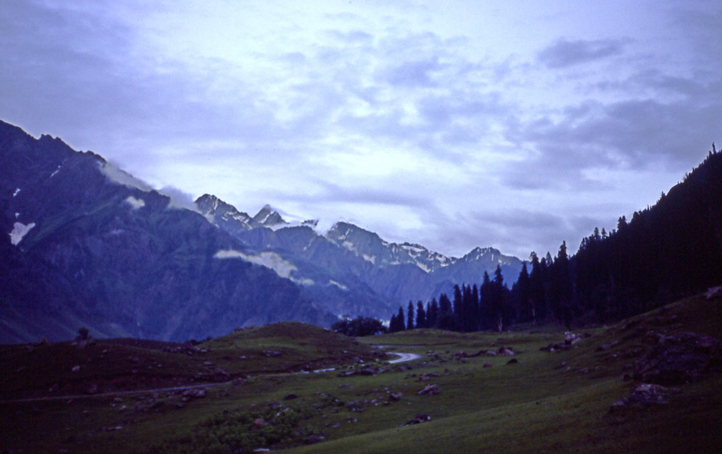 Kashmir 40