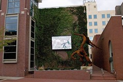 Art With Video Screen