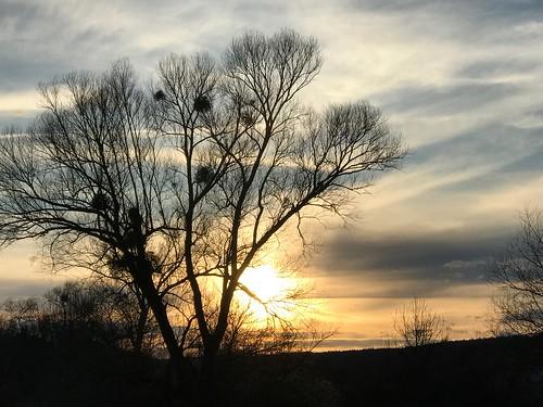 Beautiful sunset ...