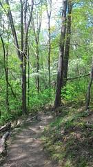 Sentier des Appalaches