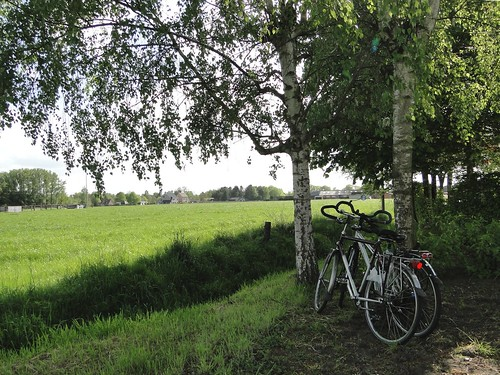 Our bicycles waiting for us in Pulderbos