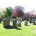 Irvine Old Parish Churchyard (289)