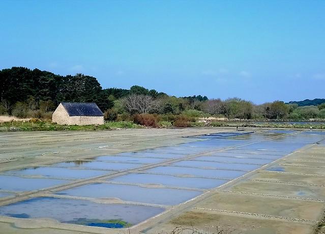 Marais salant de Kervillen à la Trinité-sur-mer (Bretagne, Morbihan, France)