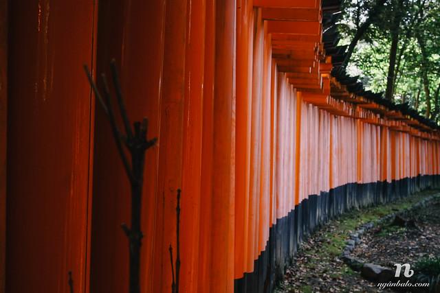 Du lịch bụi Nhật Bản (6): Hai ngày ở cố đô Kyoto - Fushimi Inari và Arashiyama