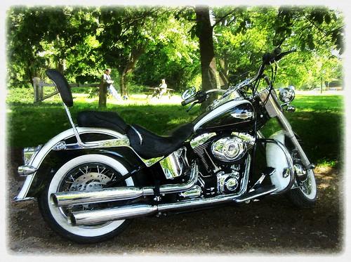 Harley Davidson.. Deluxe