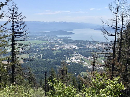 View of Sandpoint and Lake Pend Oreille from Mickinnick Trail