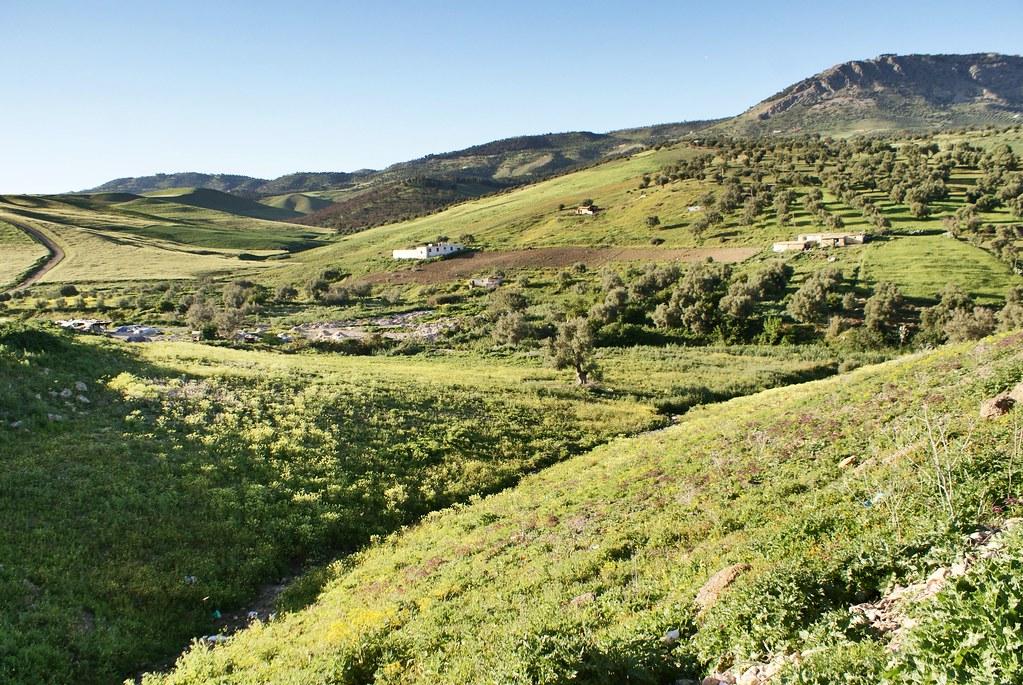 > La colline Jbel Zalagh et les paysages verdoyant au nord de Fès.