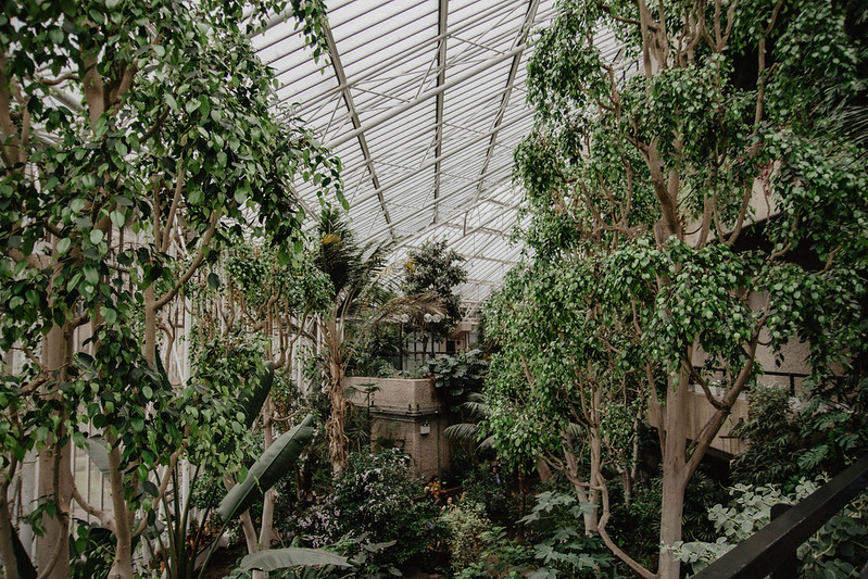 the barbican conservatory 10